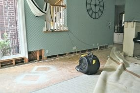 A photo to accompany a story about homeowners insurance and water damage