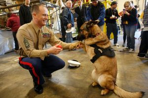 U.S. Marine Gunnery Sgt. Christopher Willingham is photographed with Lucca on Dec. 27, 2012.