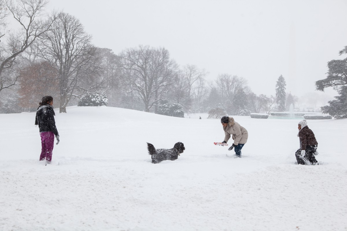 In this official White House photograph, First Lady Michelle Obama and daughters Sasha and Malia, along with family dog, Bo, play in the snow on the South Lawn of the White House on Dec. 19, 2009.