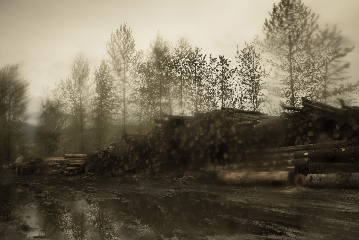 The location that was used at The Packard Sawmill on the TV show, is now home to DirtFish Rally School in Snoqualmie, WA. Todd Hido for TIME