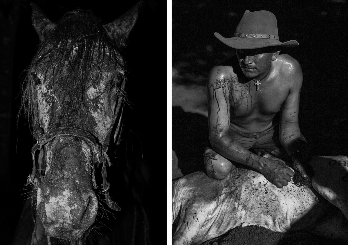 (L) The horse named Chemerejure. (R) Parrandero, a Llanero from a village called Quebrada Seca near the municipality of Orocue.