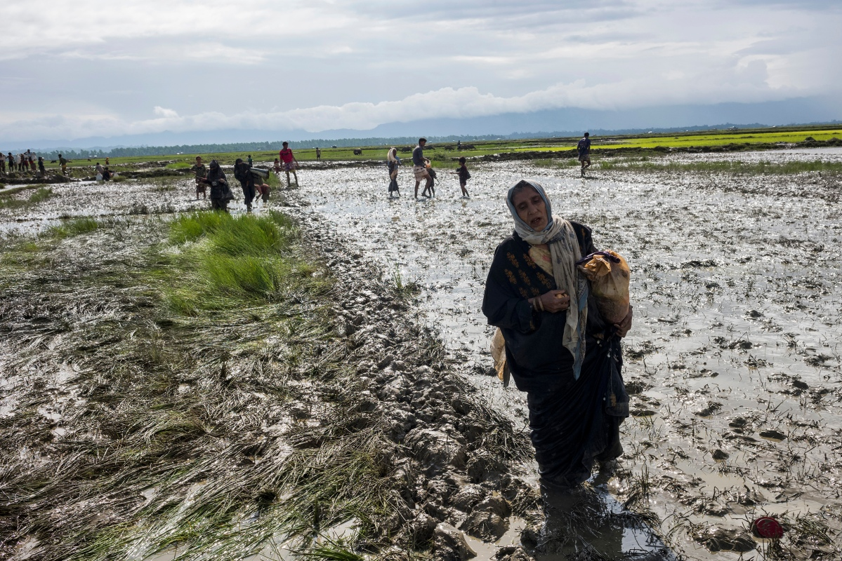 Members of Myanmar's Rohingya ethnic minority walk through paddy fields and flooded land after crossing the border into Bangladesh, August 31, 2017.ations says 87,000 mostly Rohingya refugees have poured over the border into Bangladesh since the latest round of fighting broke out 10 days ago in Myanmar's neighbouring Rakhine state.The Rohingya are a mainly Muslim stateless ethnic minority who according to rights groups have faced decades of persecution in mainly Buddhist Myanmar. Bangladesh was already home to around 400,000 Rohingya before the current crisis. Figures on Sept 5th, 2017.