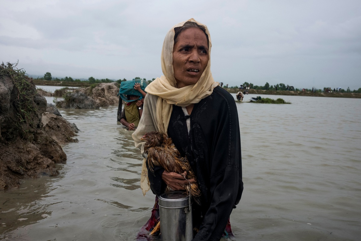 A Rohingya refugee walks in water carrying a chicken after crossing the border into Bangladesh, September 1, 2017.