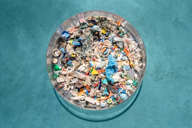 Ocean pollution—including vast amounts of plastic waste that cannot break down— is particularly hazardous for marine wildlife